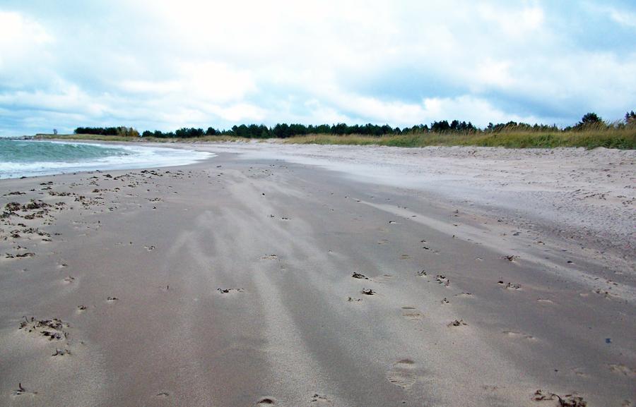 Pärispea rand