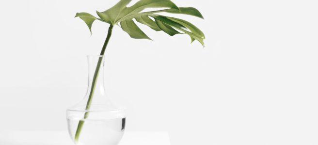 minimalism - keskendub olulisele